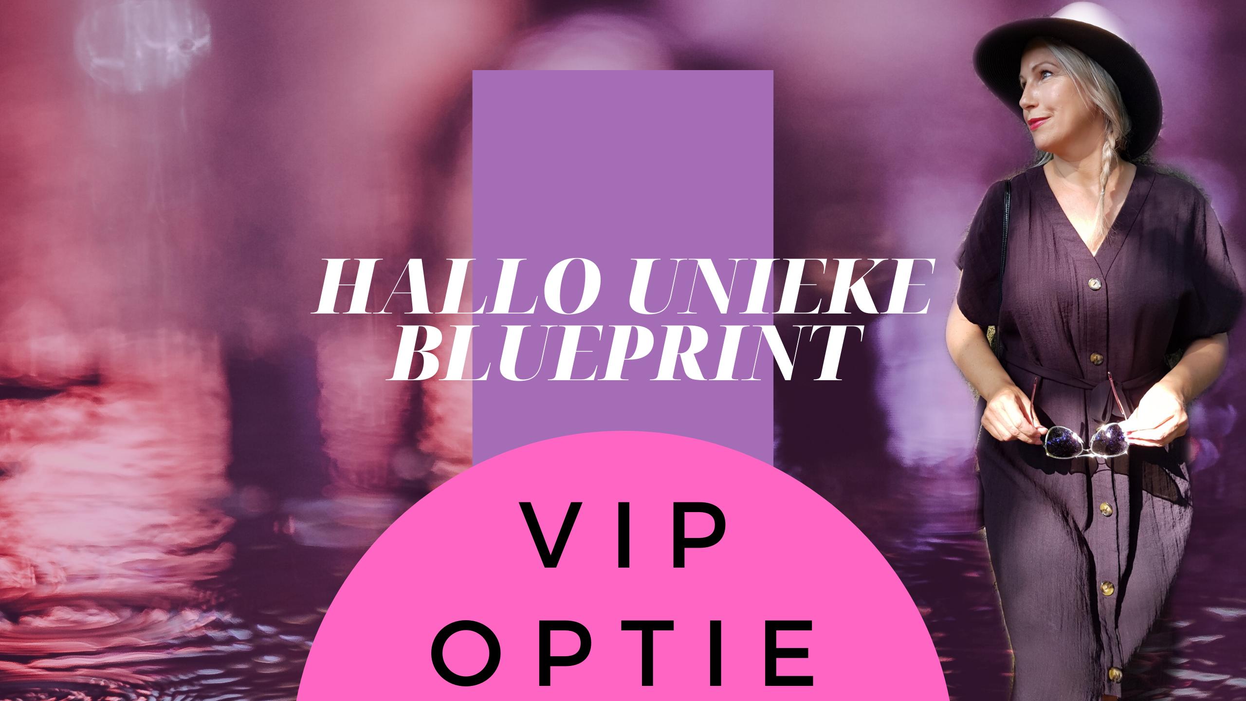 Blueprint VIP